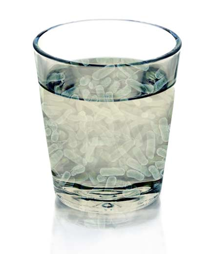Bacteria Water